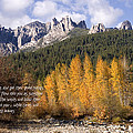 Castle Crags Autumn by Mick Anderson