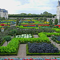 Castle Gardens by Jerry Killian