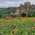 Castle In Dordogne Region France by Dave Mills