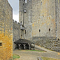 Castle Interior Ground France by Dave Mills