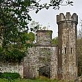 Castle Near Upper Lake Kilarney Irelnad by Douglas Barnett