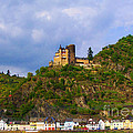 Castle On The Rhine by Patricia Land