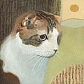 Cat And Sunset by Kazumi Whitemoon