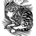 Cat Grooming Its Fur, Artwork by Bill Sanderson