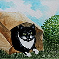 Cat In The Bag by Elizabeth Robinette Tyndall