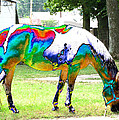 Catch A Painted Pony by Debbie Portwood