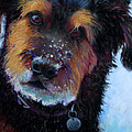Catching Snowballs by Billie Colson