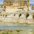 Cathedral Mosque In Cordoba by Artur Bogacki