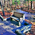 Catoctin Bench by Stephen Younts