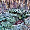 Catoctin Rock by Stephen Younts