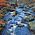 Catoctin Stream by Stephen Younts