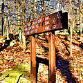 Catoctin Trail Sign by Stephen Younts