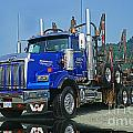 Catr0315-12 by Randy Harris