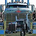 Catr0348-12 by Randy Harris