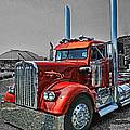 Catr0395-12 by Randy Harris