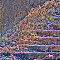 Caution Broken Stairs by Ericamaxine Price