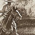 Cavalry Rides Again by Kim Henderson