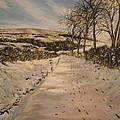 Cavehill Winter Walk by Robert Gary Chestnutt