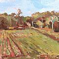 Cedar Creek Corn by Jenny Anderson