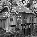 Cedar Creek Grist Mill Bw by Chalet Roome-Rigdon