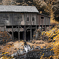 Cedar Creek Grist Mill by Steve McKinzie