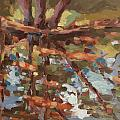Cedar Creek Reflection by Jenny Anderson