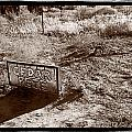 Cedar Pete Gravesite In Grafton Utah by Steve Gadomski