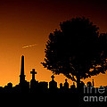 Cemetery And Tree by Mike Nellums