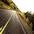 Center Lines Along A Paved Road In Autumn by Mark Duffy