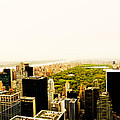 Central Park And The New York City Skyline From Above by Vivienne Gucwa