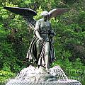 Central Park Angel by Elizabeth Fontaine-Barr