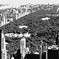 Central Park Bw3 by Scott Kelley
