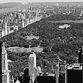 Central Park Bw6 by Scott Kelley