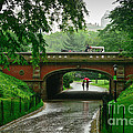 Central Park In The Rain by Greg Norrell