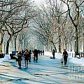Central Park In Winter by Ken Marsh