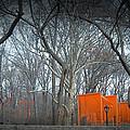 Central Park by Naxart Studio