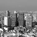 Centro De Sao Paulo by Eli K Hayasaka