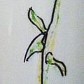 Ceramic Plant by Sandra Richardson