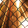 Chain-link And Light Lines by Robby Green