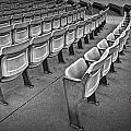 Chair Seating In An Arena With Oak Leaf by Randall Nyhof