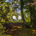 Chairs In The Sun by Michel DesRoches