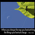 Change The Way You Look At Things by Susan Shurkey-Coates