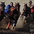 Rodeo Chariot Race by Bob Christopher