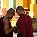 Chatting Monks by Arnaud Fouche