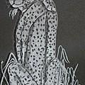 Cheetah by Akoko Okeyo