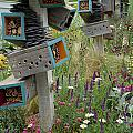 Chelsea garden display