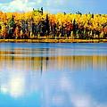 Chena Lake Drama Lll by Kathy Sampson