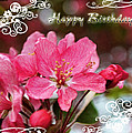 Cherry Blossoms Greeting Card  Bi by Debbie Portwood