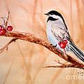 Cherry Picker by Mohamed Hirji