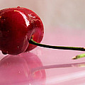 Cherry Reflection by Sarah Broadmeadow-Thomas